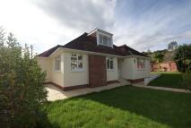 3 bed Detached Bungalow in Broadsands Park Road |...