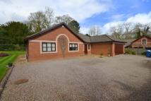 3 bed Detached Bungalow in Park Drive, Trentham...