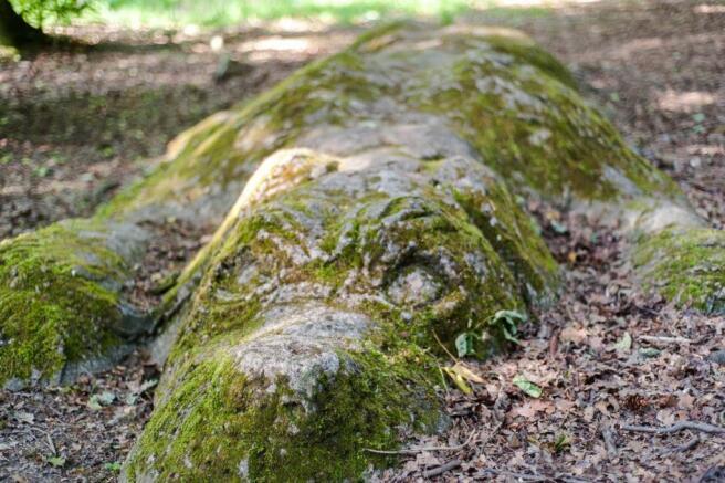 Sculpture In Park