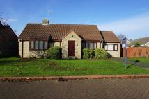 3 bed Detached Bungalow in Pearson Garth...