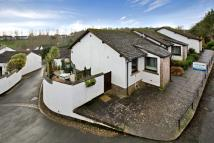 Terraced Bungalow for sale in Oakland Walk, Dawlish