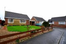 Driffield Close Bungalow for sale