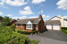 3 bed Bungalow in Steeple Drive, Exeter...
