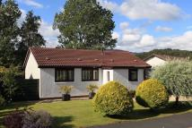 Detached Bungalow in 2 Almond Crescent...