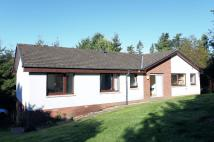 4 bed Detached home in Meadowbank...