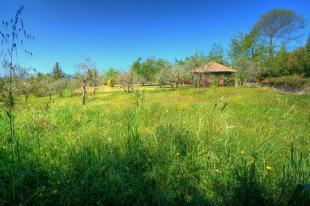 Gazebo and grounds