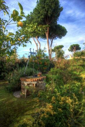 Old well in garden