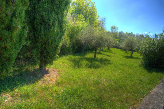 Grounds & olives