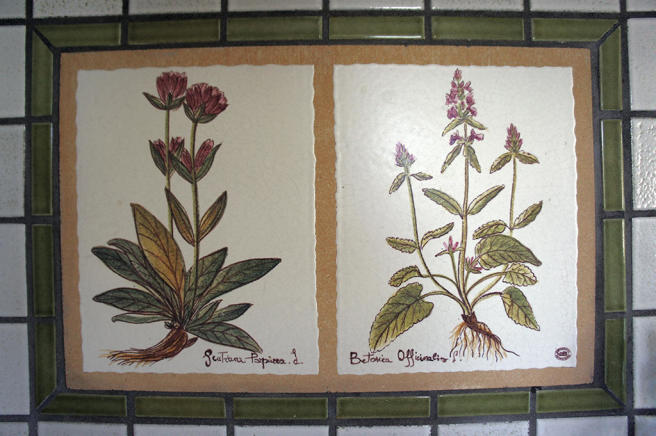 Kitchen tiles-detail