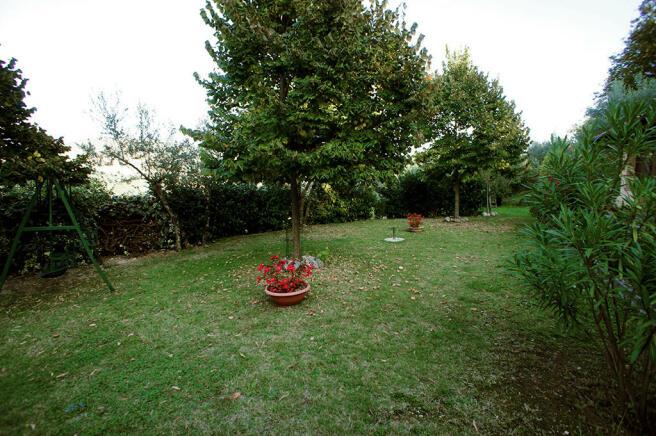 Guest wing garden