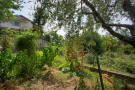 27 Vegetable garden