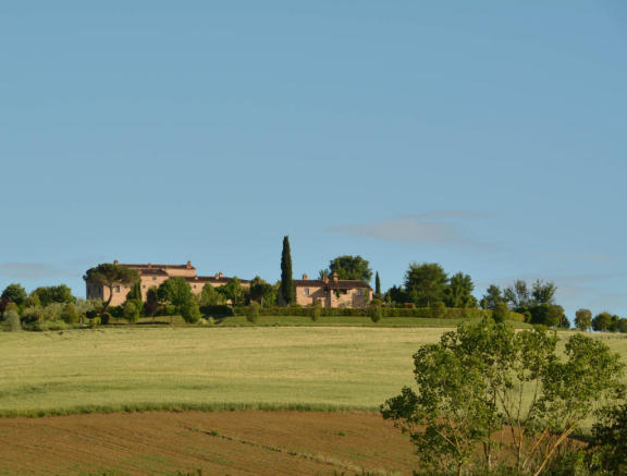 Il Pino from valley