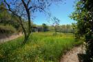 Path to veg.garden