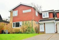 Detached property to rent in Wolf Lane, Windsor...
