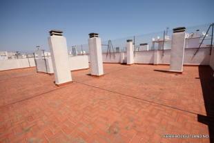 Communal Roof
