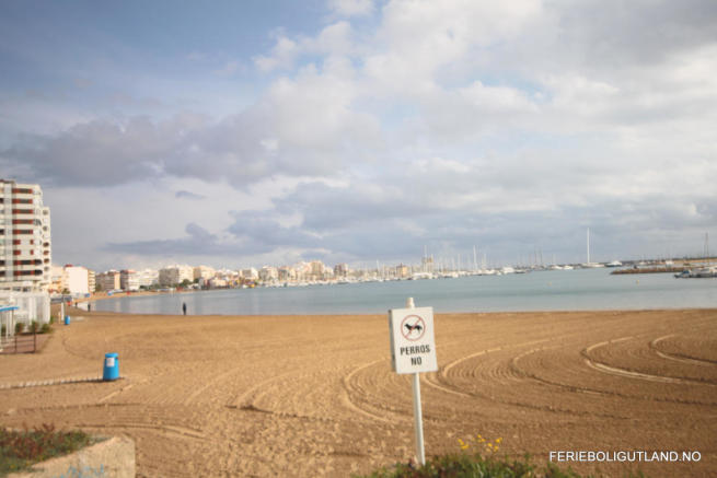 Naufragos Beach 2