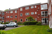 Roundhedge Way Ground Flat to rent