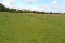 Land at Coldwell Burn Farm Land