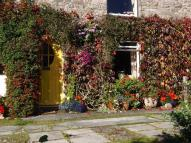 Cottage for sale in Sims Terrace, Gunnislake...