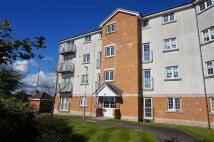 Stewartfield Gardens Apartment to rent