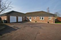 5 bed Detached house in Godfrey Road, Spixworth...