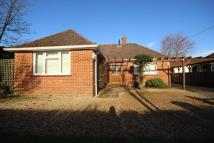 Detached Bungalow to rent in Balmer Lawn Road...