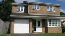 4 bed Detached home for sale in 4 Bedroom Detached