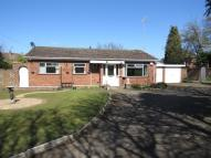 Detached Bungalow in Shackerdale Road, Wigston