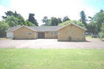 4 bed Detached Bungalow in Iver Heath, Bucks