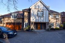 5 bed Detached house to rent in The Avenue...