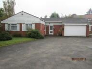 3 bedroom Detached Bungalow in Shelsley Drive...