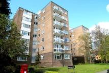 new Apartment to rent in London Road