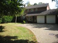 4 bed Detached house to rent in Manor Drive, Cuckfield...