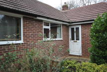 Detached Bungalow to rent in Hinton Drive, Crowthorne