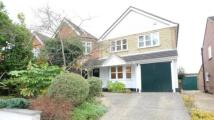 Detached property to rent in Napier Road, Crowthorne