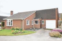 Bungalow for sale in Hazel Close, Ashbourne