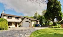 4 bedroom Detached home for sale in Cowbridge Road...