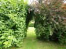 Garden at Side