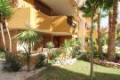Ground Flat for sale in Punta Prima, Alicante...
