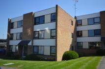 Flat to rent in Maltings Court, Hoe Lane