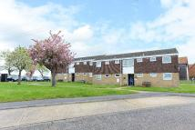 Retirement Property to rent in Thompson Court...