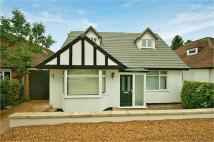 4 bed Detached home in Tippendell Lane...