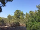 property for sale in Mallorca, Santa Ponsa, Santa Ponsa