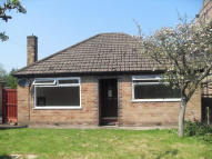 Detached Bungalow to rent in 189Rushgreen Road, Lymm...