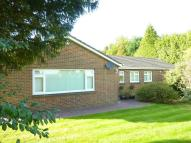 3 bed Detached Bungalow for sale in High Road, Chipstead