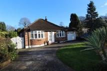 Detached Bungalow to rent in Waterer Gardens...