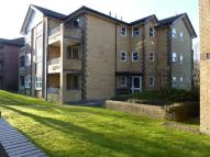 1 bed Apartment to rent in Elm Road
