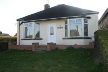 Detached Bungalow to rent in TUNSTALL ROAD, BIDDULPH