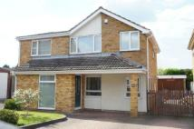 Detached property to rent in TRURO CLOSE, CONGLETON