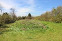 Northside Lane Land for sale